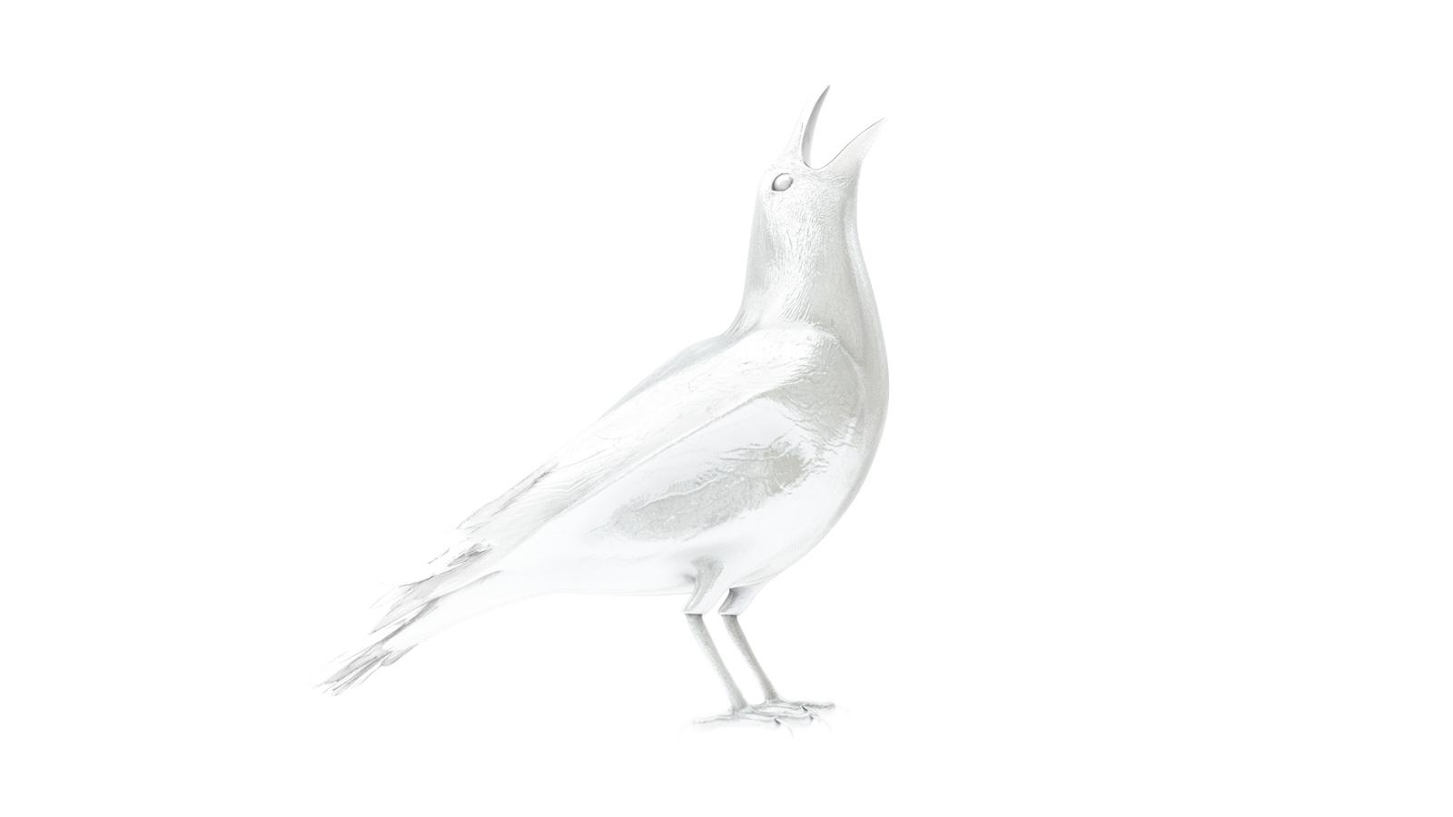 3D raven